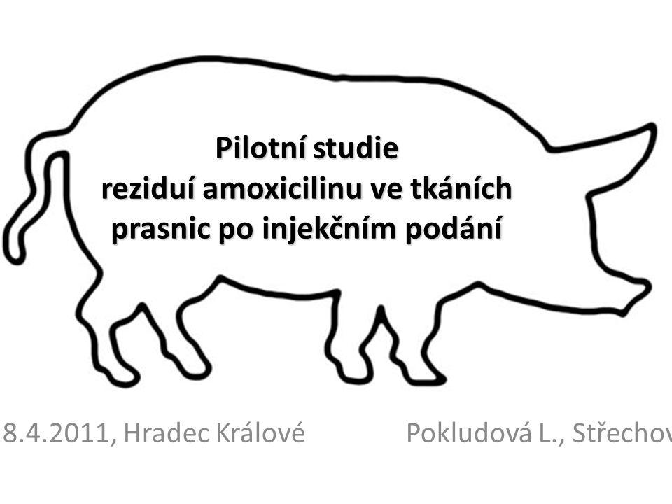Pilotní studie reziduí amoxicilinu ve tkáních prasnic po injekčním podání 8.4.2011, Hradec KrálovéPokludová L., Střechová V.