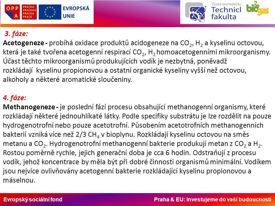 Evropský sociální fond Praha & EU: Investujeme do vaší budoucnosti 3. fáze: Acetogeneze - probíhá oxidace produktů acidogeneze na CO 2, H 2 a kyselinu