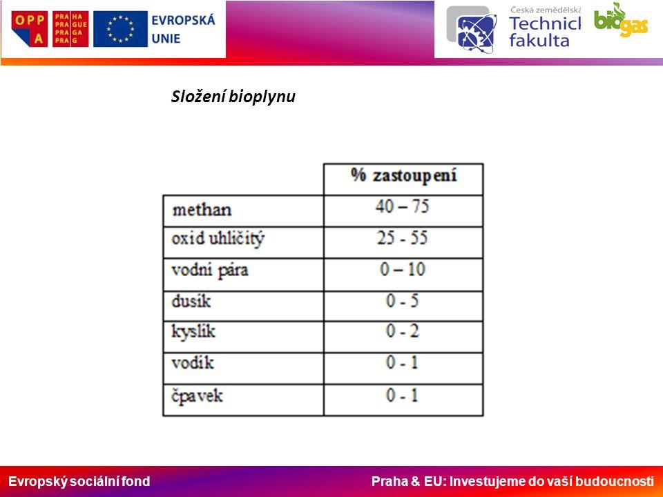Evropský sociální fond Praha & EU: Investujeme do vaší budoucnosti Složení bioplynu