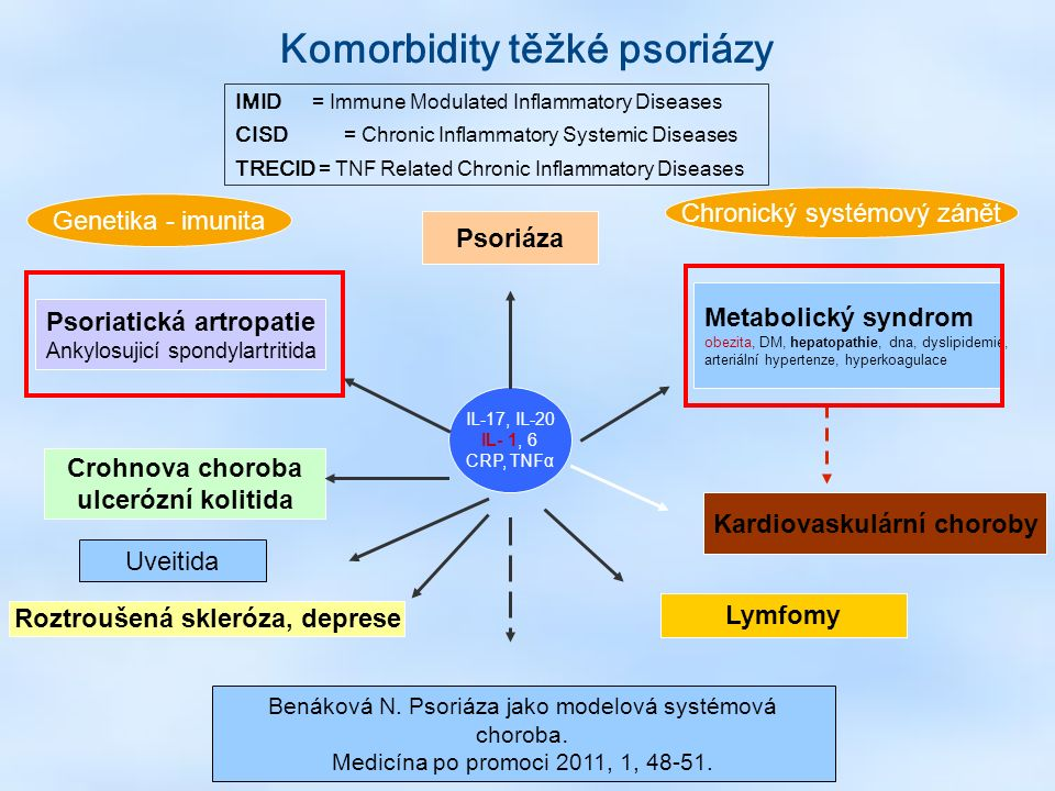 IL-17, IL-20 IL- 1, 6 CRP, TNFα Psoriáza Roztroušená skleróza, deprese Psoriatická artropatie Ankylosujicí spondylartritida Crohnova choroba ulcerózní kolitida Kardiovaskulární choroby Metabolický syndrom obezita, DM, hepatopathie, dna, dyslipidemie, arteriální hypertenze, hyperkoagulace Lymfomy Genetika - imunita Chronický systémový zánět IMID = Immune Modulated Inflammatory Diseases CISD = Chronic Inflammatory Systemic Diseases TRECID = TNF Related Chronic Inflammatory Diseases Komorbidity těžké psoriázy Uveitida Benáková N.