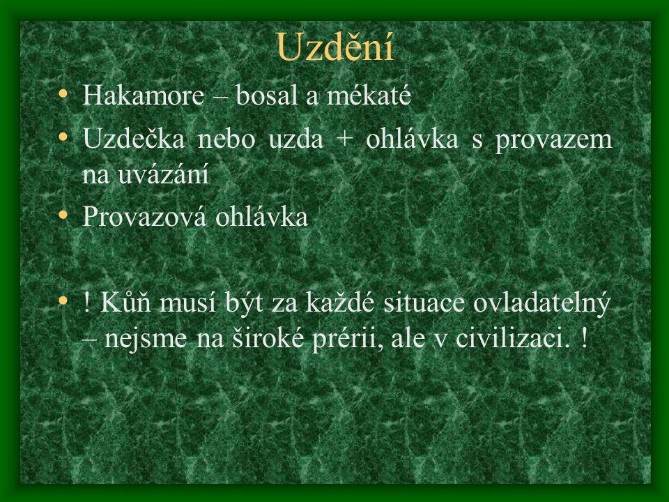 Uzdění Hakamore – bosal a mékaté Uzdečka nebo uzda + ohlávka s provazem na uvázání Provazová ohlávka .