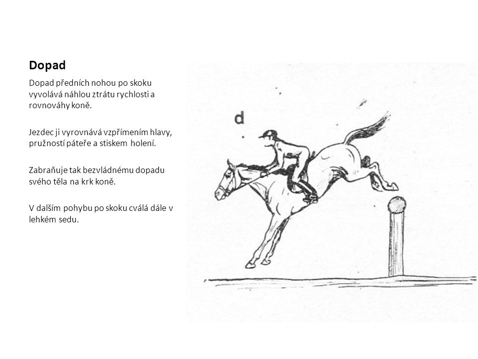 Dopad Dopad předních nohou po skoku vyvolává náhlou ztrátu rychlosti a rovnováhy koně.