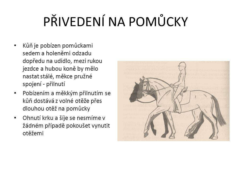 PŘIVEDENÍ NA POMŮCKY Kůň je pobízen pomůckami sedem a holeněmi odzadu dopředu na udidlo, mezi rukou jezdce a hubou koně by mělo nastat stálé, měkce pružné spojení - přilnutí Pobízením a měkkým přilnutím se kůň dostává z volné otěže přes dlouhou otěž na pomůcky Ohnutí krku a šíje se nesmíme v žádném případě pokoušet vynutit otěžemi