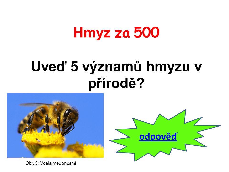 Hmyz za 500 Uveď 5 významů hmyzu v přírodě? odpověď Obr. 5: Včela medonosná