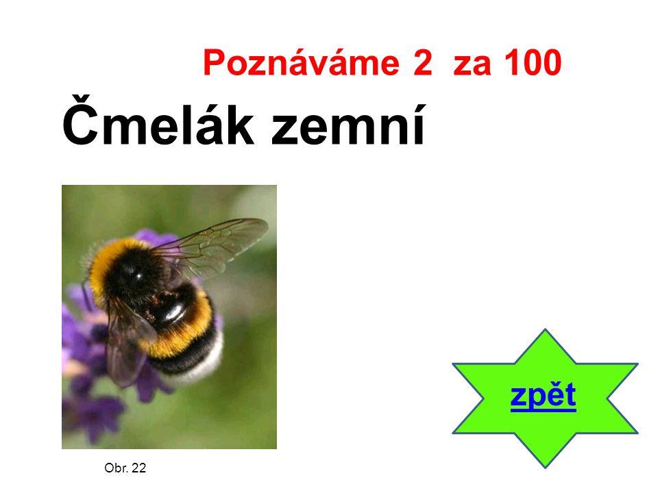 zpět Čmelák zemní Poznáváme 2 za 100 Obr. 22