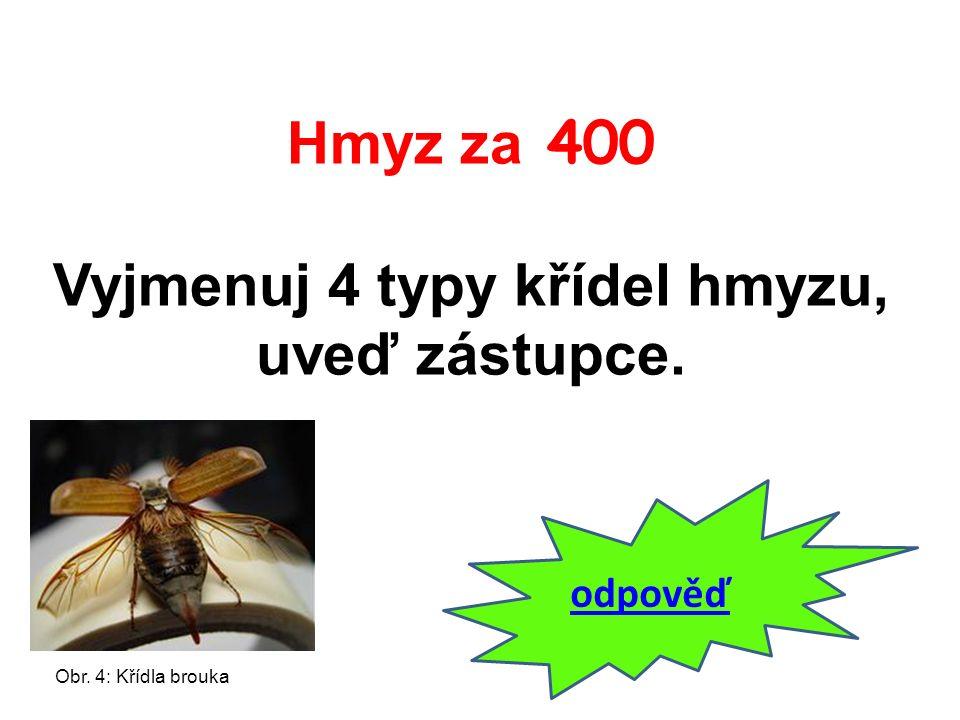 Hmyz za 400 Vyjmenuj 4 typy křídel hmyzu, uveď zástupce. odpověď Obr. 4: Křídla brouka