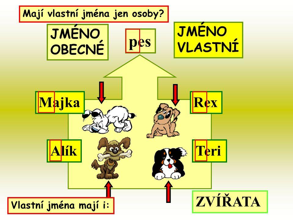 pes MajkaRex AlíkTeri Mají vlastní jména jen osoby.