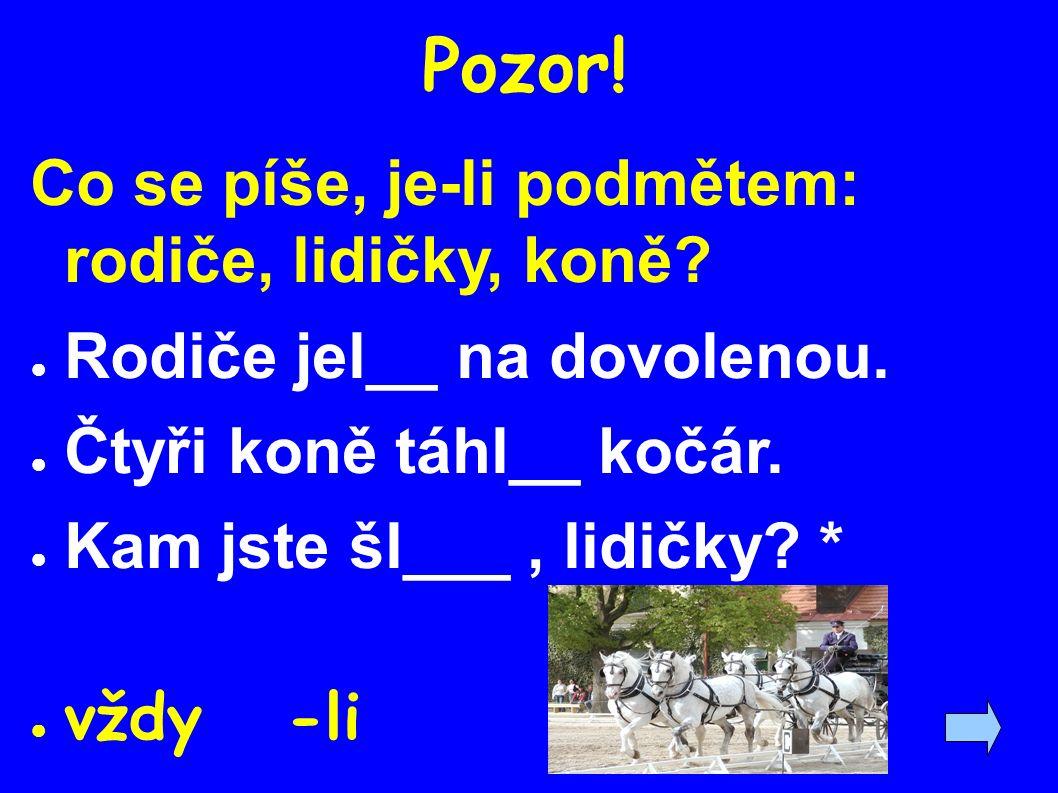Zdroje: ● Pravidla českého pravopisu ● Grepl, M.