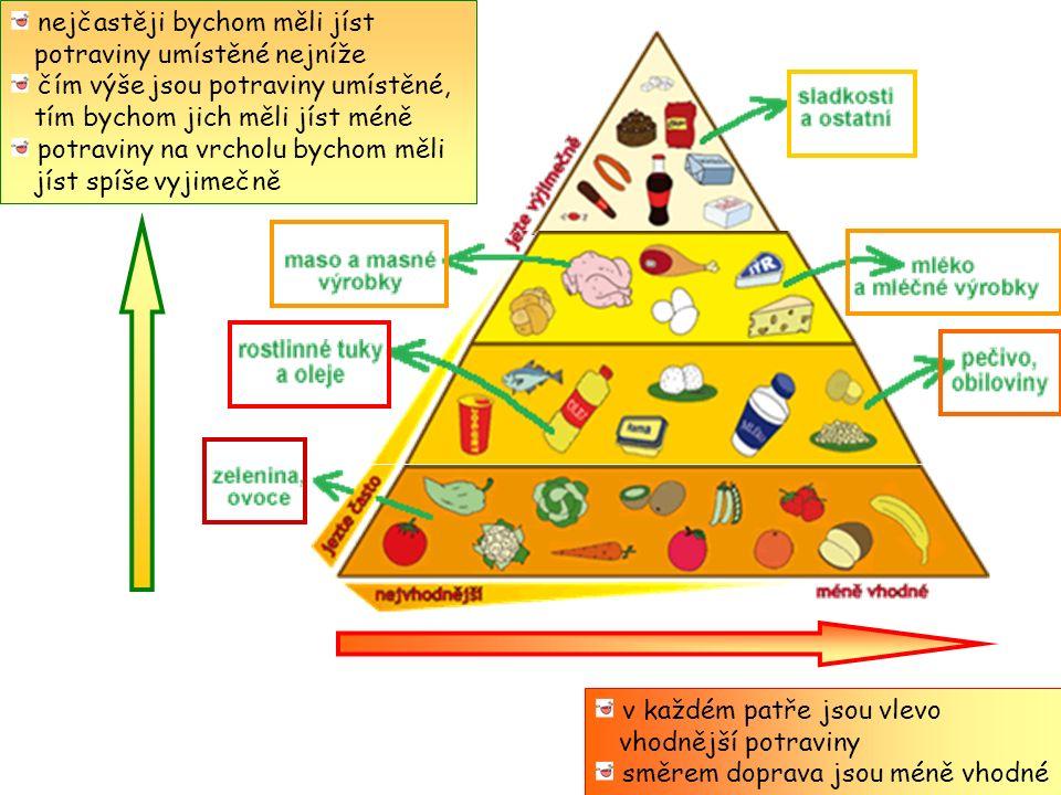 nejčastěji bychom měli jíst potraviny umístěné nejníže čím výše jsou potraviny umístěné, tím bychom jich měli jíst méně potraviny na vrcholu bychom měli jíst spíše vyjimečně v každém patře jsou vlevo vhodnější potraviny směrem doprava jsou méně vhodné