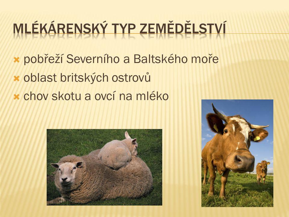 pobřeží Severního a Baltského moře  oblast britských ostrovů  chov skotu a ovcí na mléko