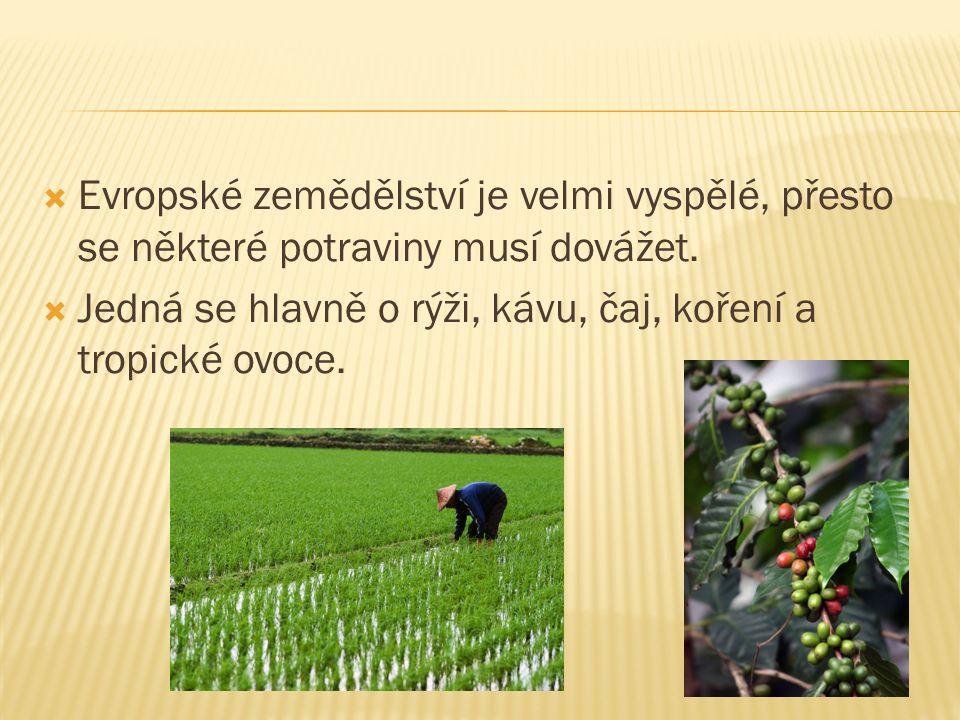  Evropské zemědělství je velmi vyspělé, přesto se některé potraviny musí dovážet.