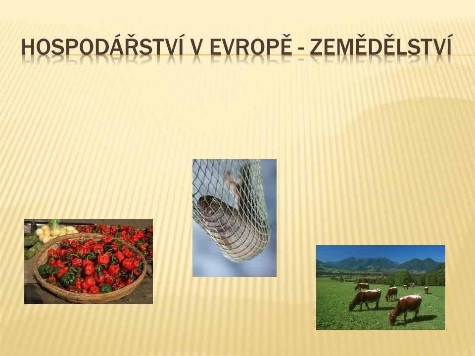  zajistit dostatek potravin pro obyvatele  zemědělci využívají k pěstování kulturních plodin a chovu zvířat přírodních zdrojů: vodu, půdu, podnebí a sluneční energii