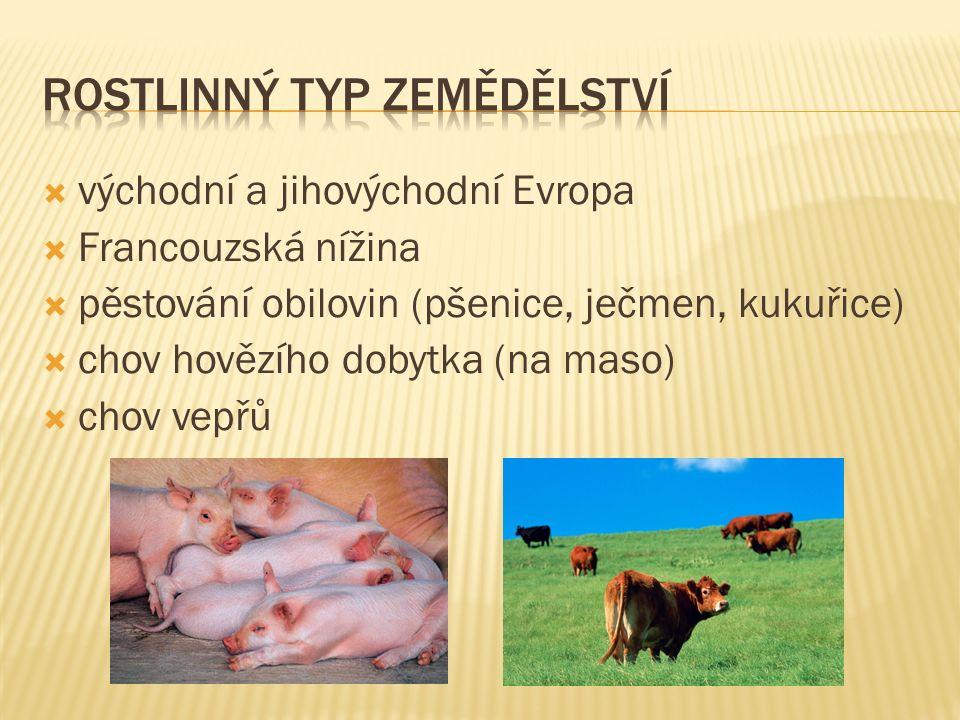  východní a jihovýchodní Evropa  Francouzská nížina  pěstování obilovin (pšenice, ječmen, kukuřice)  chov hovězího dobytka (na maso)  chov vepřů