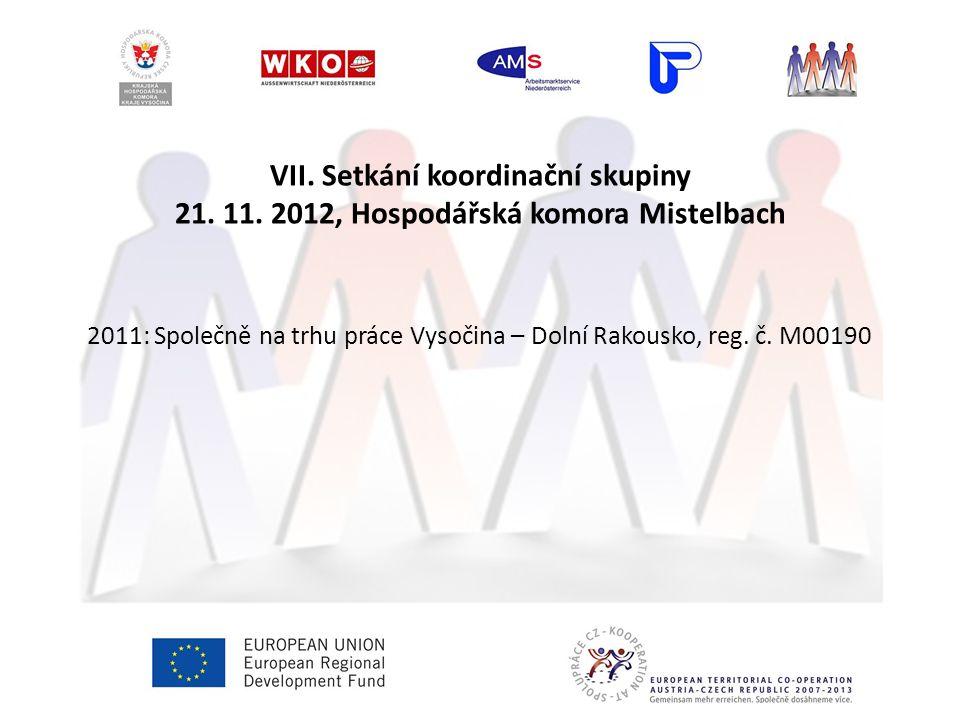 VII. Setkání koordinační skupiny 21. 11.