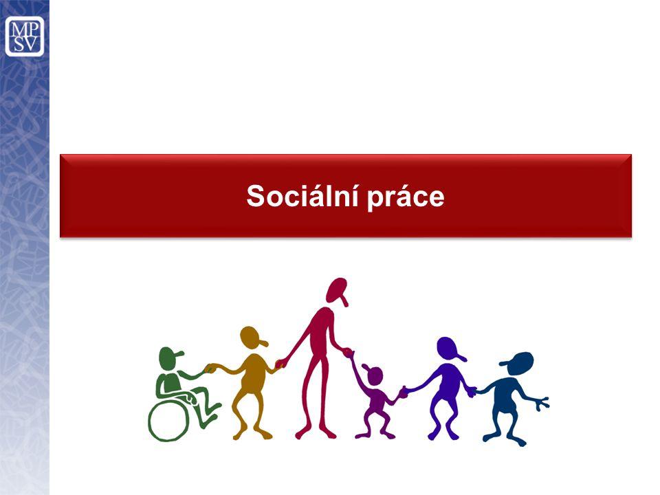 Nutné změny Vyjasnit výkon sociální práce ve veřejné správě, v sociálních službách a v dalších odvětvích, tj.