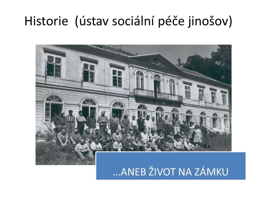 …ANEB ŽIVOT NA ZÁMKU Historie (ústav sociální péče jinošov)