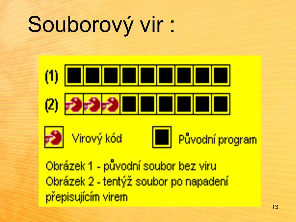 Souborový vir : 13