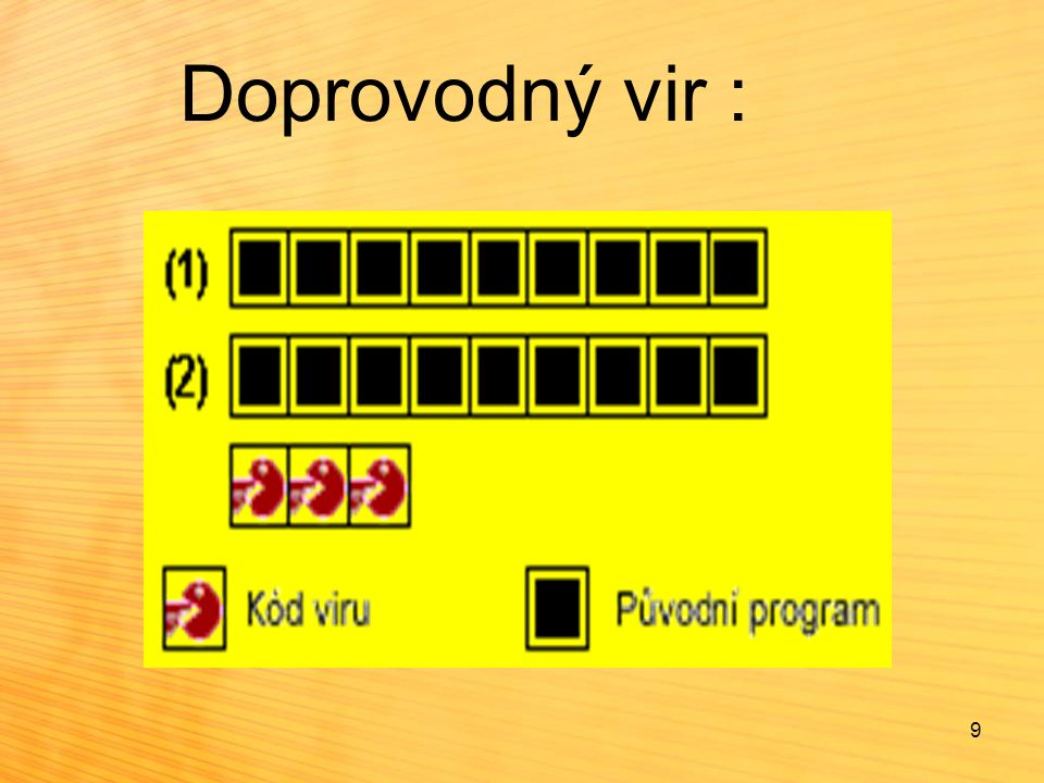 Doprovodný vir : 9