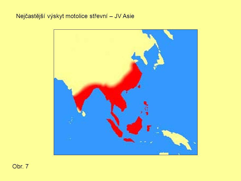 Nejčastější výskyt motolice střevní – JV Asie Obr. 7