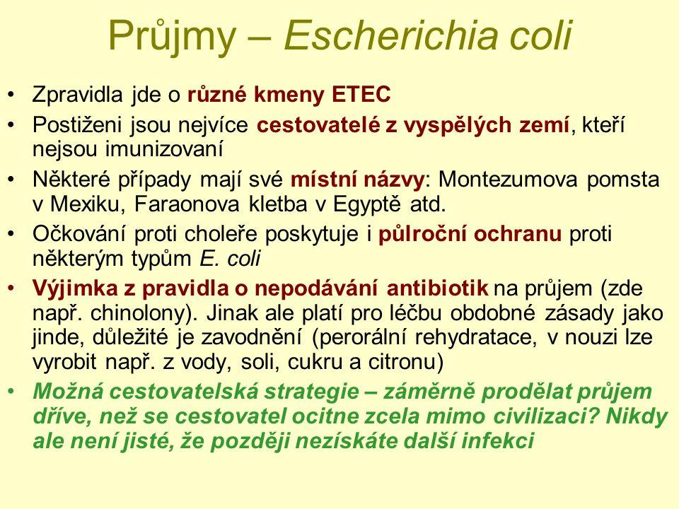 Průjmy – Escherichia coli Zpravidla jde o různé kmeny ETEC Postiženi jsou nejvíce cestovatelé z vyspělých zemí, kteří nejsou imunizovaní Některé případy mají své místní názvy: Montezumova pomsta v Mexiku, Faraonova kletba v Egyptě atd.