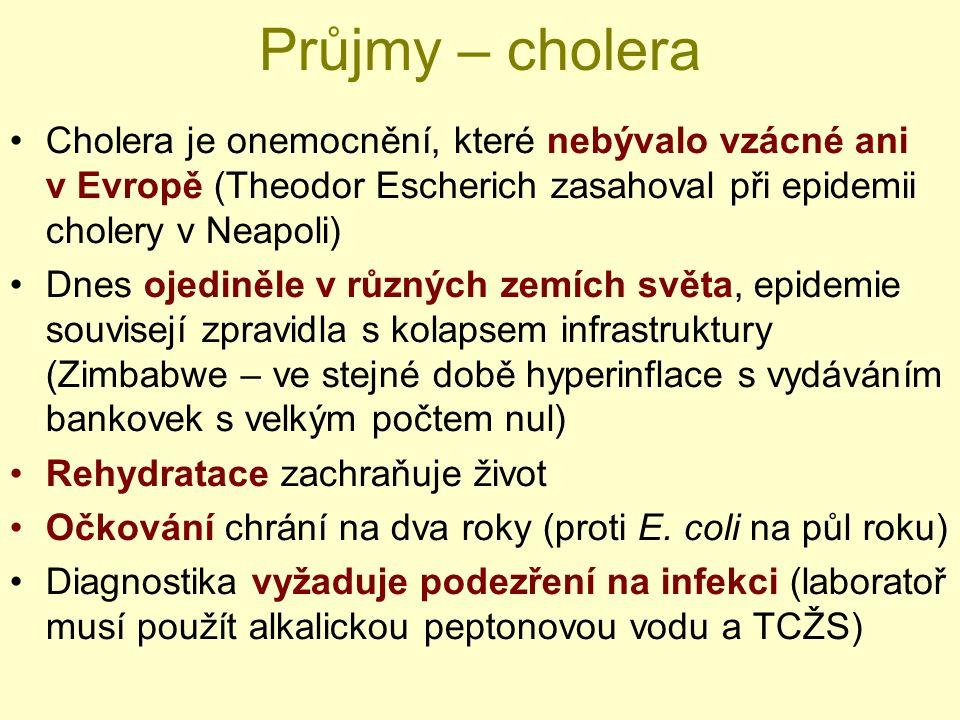 Průjmy – cholera Cholera je onemocnění, které nebývalo vzácné ani v Evropě (Theodor Escherich zasahoval při epidemii cholery v Neapoli) Dnes ojediněle v různých zemích světa, epidemie souvisejí zpravidla s kolapsem infrastruktury (Zimbabwe – ve stejné době hyperinflace s vydáváním bankovek s velkým počtem nul) Rehydratace zachraňuje život Očkování chrání na dva roky (proti E.