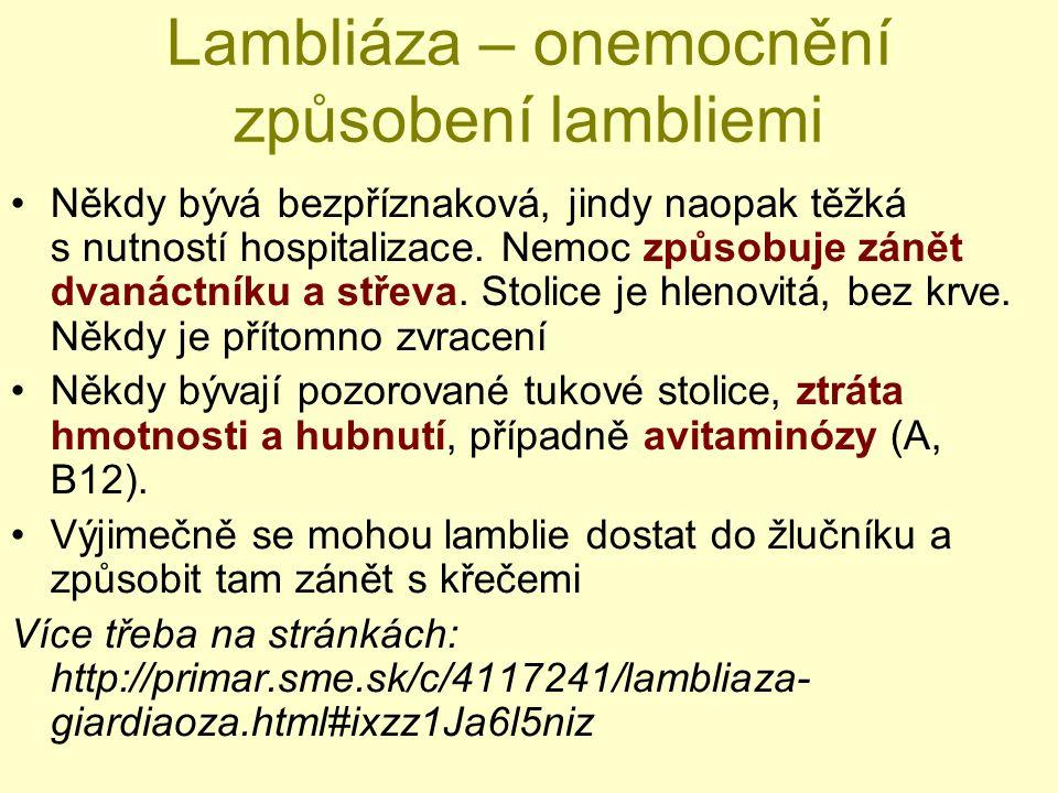 Lambliáza – onemocnění způsobení lambliemi Někdy bývá bezpříznaková, jindy naopak těžká s nutností hospitalizace. Nemoc způsobuje zánět dvanáctníku a