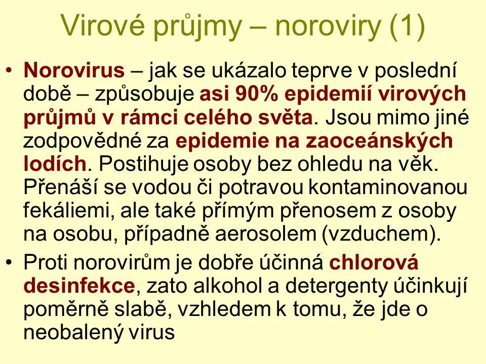 Virové průjmy – noroviry (1) Norovirus – jak se ukázalo teprve v poslední době – způsobuje asi 90% epidemií virových průjmů v rámci celého světa. Jsou
