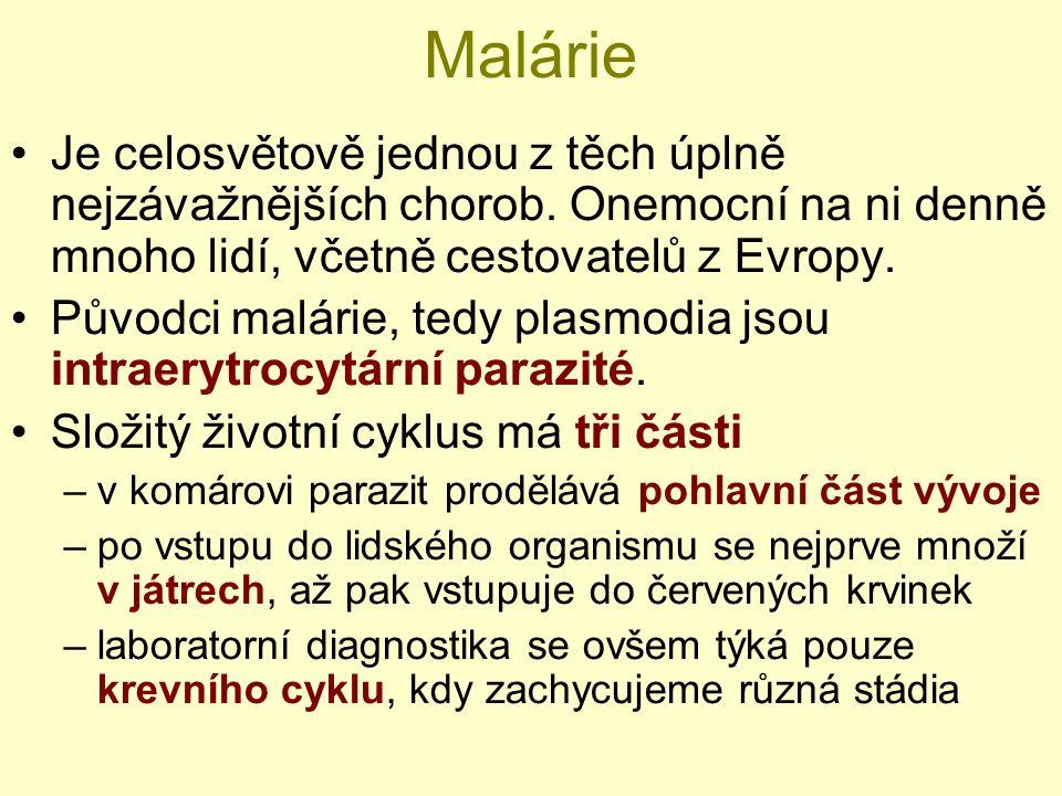 Malárie Je celosvětově jednou z těch úplně nejzávažnějších chorob.