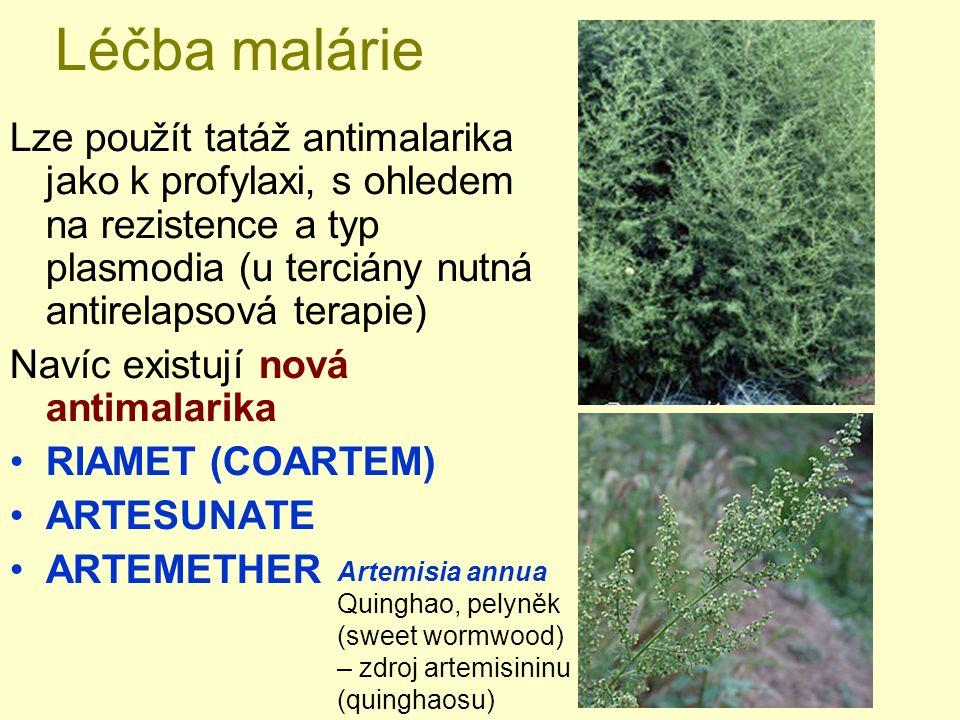 Léčba malárie Lze použít tatáž antimalarika jako k profylaxi, s ohledem na rezistence a typ plasmodia (u terciány nutná antirelapsová terapie) Navíc existují nová antimalarika RIAMET (COARTEM) ARTESUNATE ARTEMETHER Artemisia annua Quinghao, pelyněk (sweet wormwood) – zdroj artemisininu (quinghaosu)