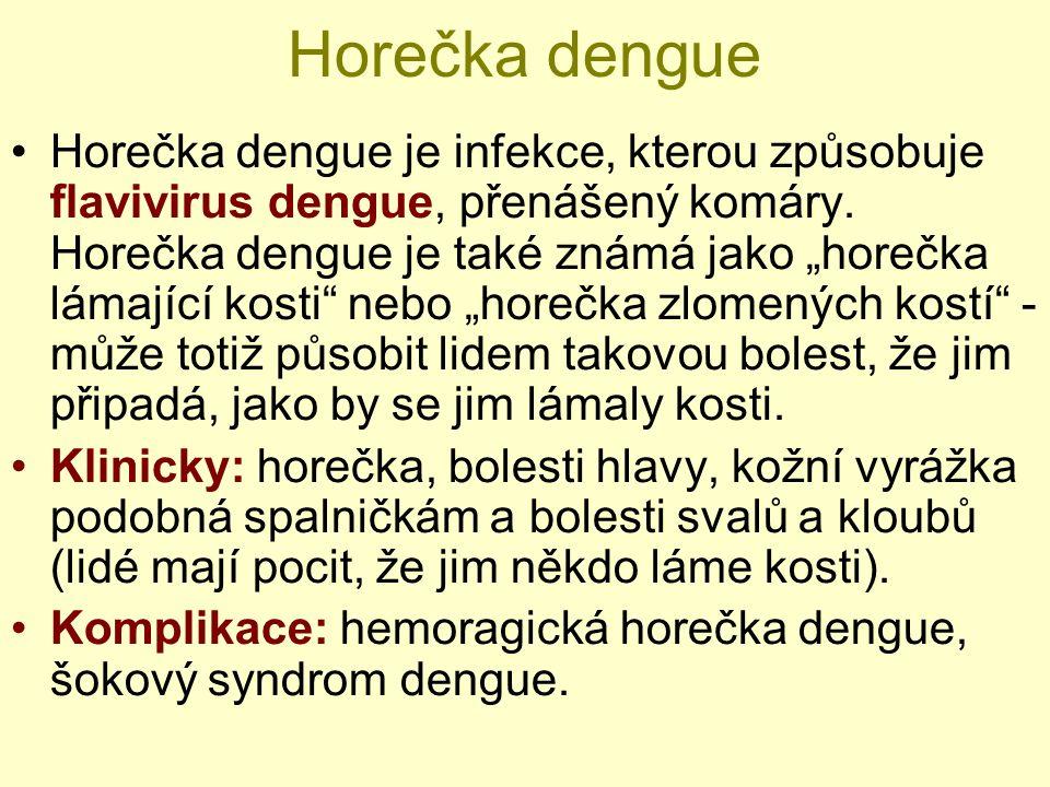 Horečka dengue Horečka dengue je infekce, kterou způsobuje flavivirus dengue, přenášený komáry.