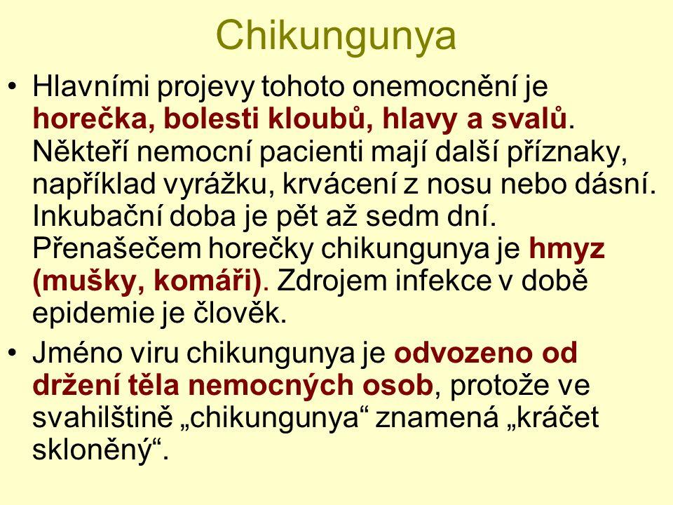 Chikungunya Hlavními projevy tohoto onemocnění je horečka, bolesti kloubů, hlavy a svalů. Někteří nemocní pacienti mají další příznaky, například vyrá