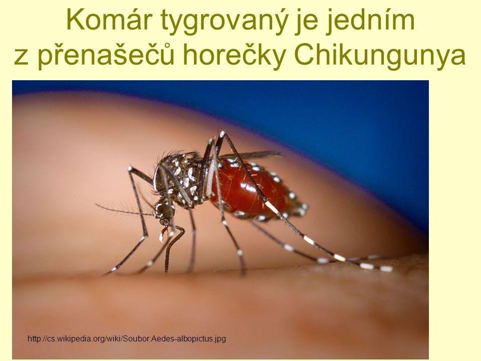 Komár tygrovaný je jedním z přenašečů horečky Chikungunya http://cs.wikipedia.org/wiki/Soubor:Aedes-albopictus.jpg
