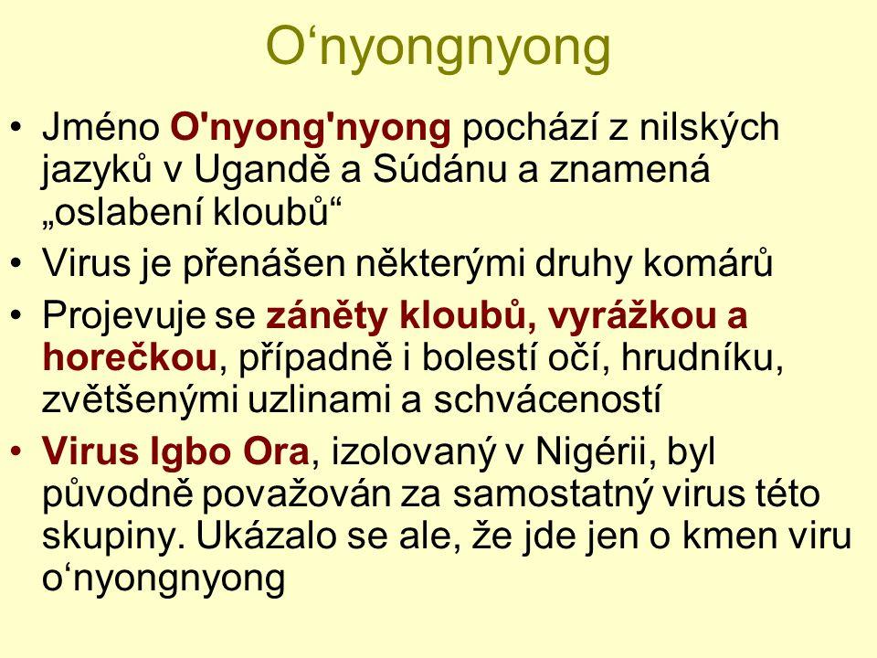 """O'nyongnyong Jméno O'nyong'nyong pochází z nilských jazyků v Ugandě a Súdánu a znamená """"oslabení kloubů"""" Virus je přenášen některými druhy komárů Proj"""
