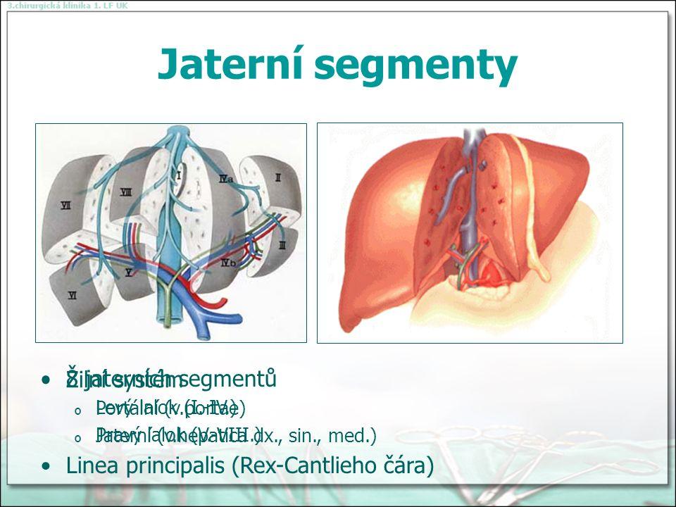 Jaterní segmenty Žilní systém o Portální (v.portae) o Jaterní (v.hepatica dx., sin., med.) 8 jaterních segmentů o Levý lalok (I.-IV.) o Pravý lalok (V.-VIII.) Linea principalis (Rex-Cantlieho čára)
