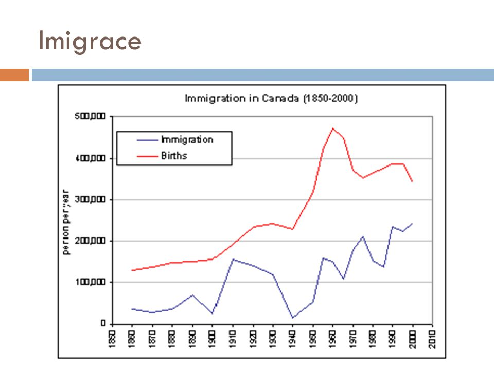 Imigrace