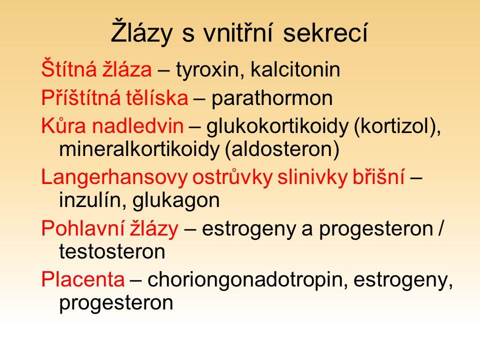 Žlázy s vnitřní sekrecí Štítná žláza – tyroxin, kalcitonin Příštítná tělíska – parathormon Kůra nadledvin – glukokortikoidy (kortizol), mineralkortikoidy (aldosteron) Langerhansovy ostrůvky slinivky břišní – inzulín, glukagon Pohlavní žlázy – estrogeny a progesteron / testosteron Placenta – choriongonadotropin, estrogeny, progesteron