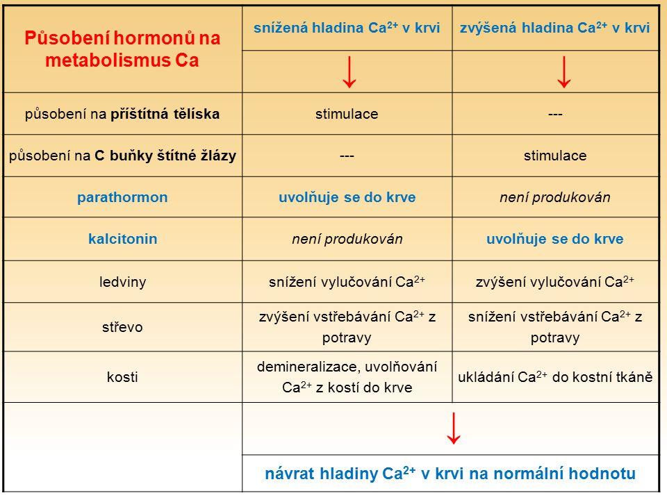Působení hormonů na metabolismus Ca snížená hladina Ca 2+ v krvi zvýšená hladina Ca 2+ v krvi působení na příštítná tělíska stimulace --- působení na C buňky štítné žlázy --- stimulace parathormon uvolňuje se do krve není produkován kalcitonin není produkován uvolňuje se do krve ledviny snížení vylučování Ca 2+ zvýšení vylučování Ca 2+ střevo zvýšení vstřebávání Ca 2+ z potravy snížení vstřebávání Ca 2+ z potravy kosti demineralizace, uvolňování Ca 2+ z kostí do krve ukládání Ca 2+ do kostní tkáně návrat hladiny Ca 2+ v krvi na normální hodnotu ↓↓ ↓