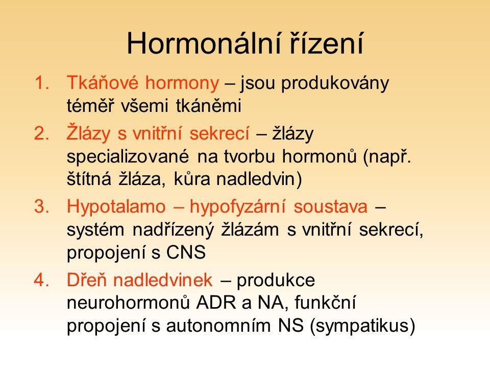 Hormonální řízení 1.Tkáňové hormony – jsou produkovány téměř všemi tkáněmi 2.Žlázy s vnitřní sekrecí – žlázy specializované na tvorbu hormonů (např.