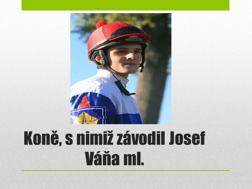 Koně, s nimiž závodil Josef Váňa ml.