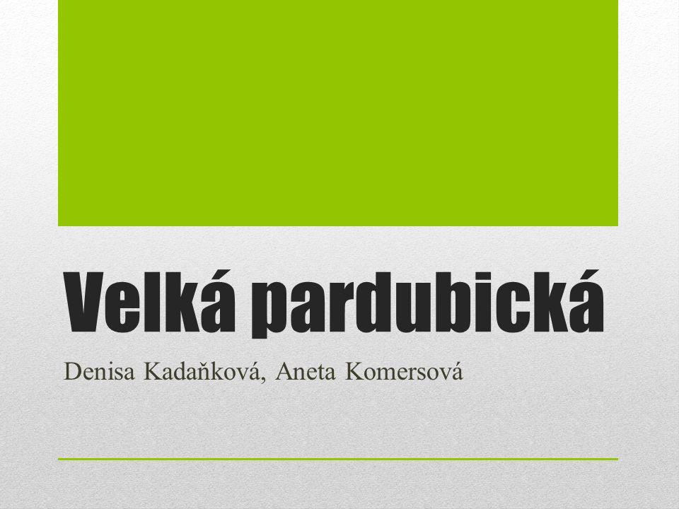 Velká pardubická Denisa Kadaňková, Aneta Komersová