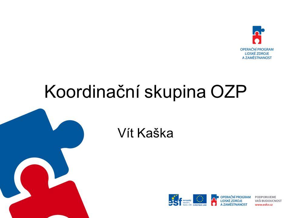 Koordinační skupina OZP Vít Kaška