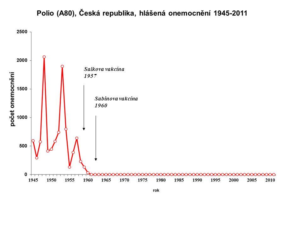 Poliomyelitida - klinický obraz inkubační doba 5-35 dní Forma onemocnění: inaparetní: 90-95% onemocnění abortivní: horečka, někdy nausea, zvracení, únava trvající 1- 4 dny meningeální non-paretická: - u malého počtu nemocných po 1-10 denní latenci opět horečka s meningeálními příznaky - většinou bez vzniku paréz Paretická: u 0,1 – 1 % infikovaných vznik paréz na vrcholu horečnatého období – souvislost se zvýšenou zátěží v ID - asymetrické postižení, většinou monoparéza dolní končetiny, vzácněji postiženo více končetin, často jsou postiženy svaly šíjové a zádové - zpočátku jsou svaly tuhé, bolestivé, po odeznění spasmu chabé, bez rehabilitace rychle atrofují, dochází ke kontrakturám a deformitám končetin i páteře Bulbární: 5 – 35 % paretických forem, postižení svalů měkkého patra a faryngu s dyfagií a dechovými potížemi, v nejtěžších případech postižení dýchacího centra v mozkovém kmeni ● komplikace v akutním stadiu: myokarditida způsobená poliovirem, bronchopneumonie, uroinfekce ● prognóza: letalita paretických forem až 10%, ve většině případů parézy trvalého rázu ● pozdní následek onemocnění: postpoliomyelitický syndrom
