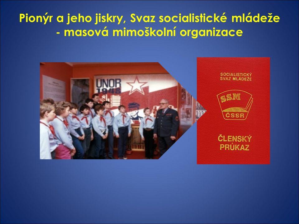 Pionýr a jeho jiskry, Svaz socialistické mládeže - masová mimoškolní organizace