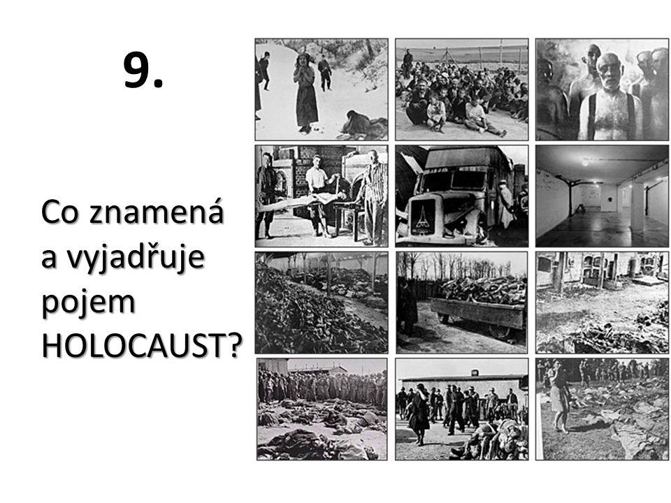 9. Co znamená a vyjadřuje pojem HOLOCAUST?