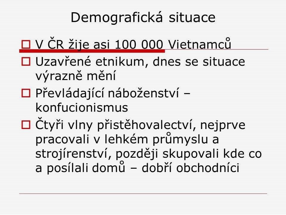 Demografická situace  V ČR žije asi 100 000 Vietnamců  Uzavřené etnikum, dnes se situace výrazně mění  Převládající náboženství – konfucionismus  Čtyři vlny přistěhovalectví, nejprve pracovali v lehkém průmyslu a strojírenství, později skupovali kde co a posílali domů – dobří obchodníci