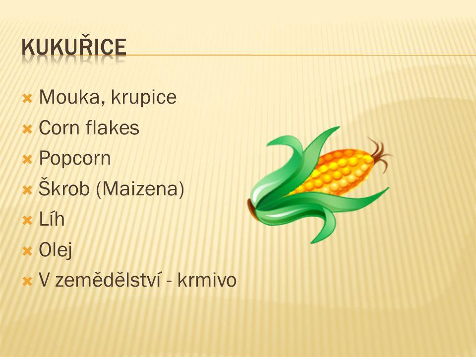  Mouka, krupice  Corn flakes  Popcorn  Škrob (Maizena)  Líh  Olej  V zemědělství - krmivo