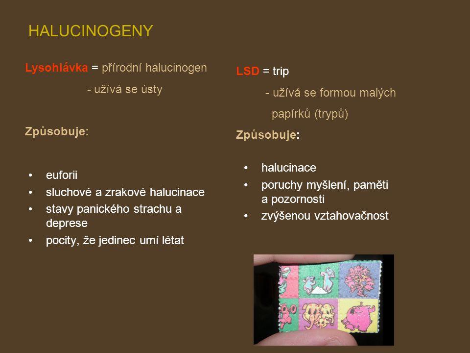 HALUCINOGENY euforii sluchové a zrakové halucinace stavy panického strachu a deprese pocity, že jedinec umí létat halucinace poruchy myšlení, paměti a pozornosti zvýšenou vztahovačnost Lysohlávka = přírodní halucinogen - užívá se ústy Způsobuje: LSD = trip - užívá se formou malých papírků (trypů) Způsobuje: