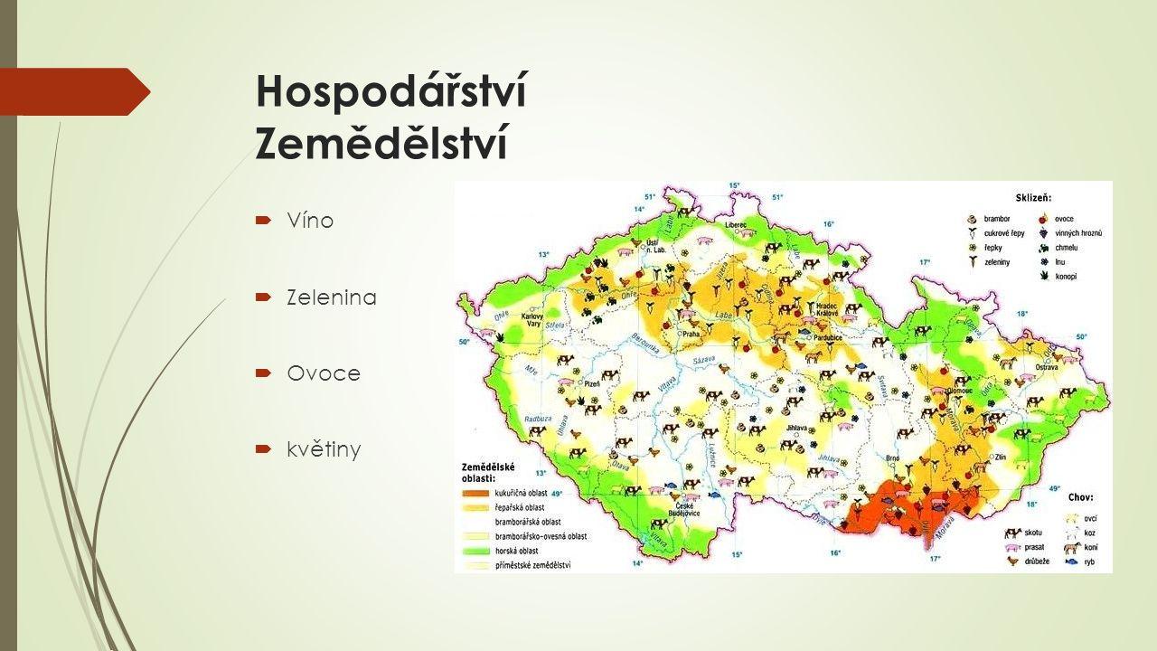 Hospodářství Zemědělství  Víno  Zelenina  Ovoce  květiny
