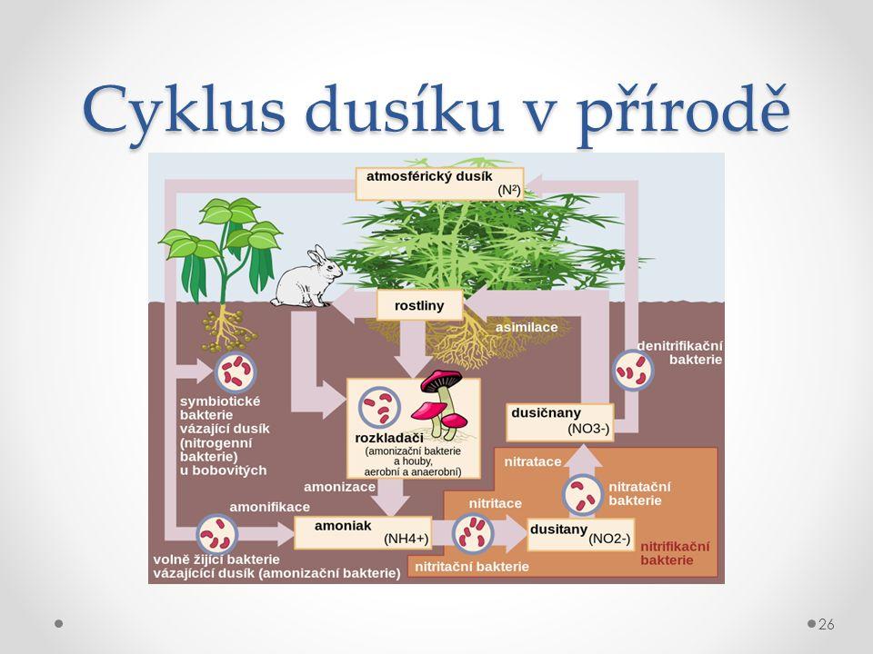 Cyklus dusíku v přírodě 26