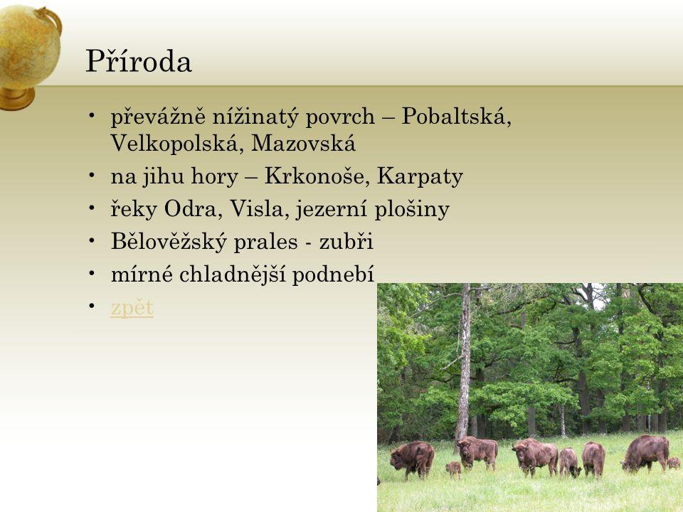 Příroda převážně nížinatý povrch – Pobaltská, Velkopolská, Mazovská na jihu hory – Krkonoše, Karpaty řeky Odra, Visla, jezerní plošiny Bělověžský prales - zubři mírné chladnější podnebí zpět